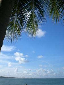 praia-de-calhetas-4-1371728